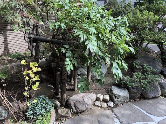 札幌志の家の蕎麦5
